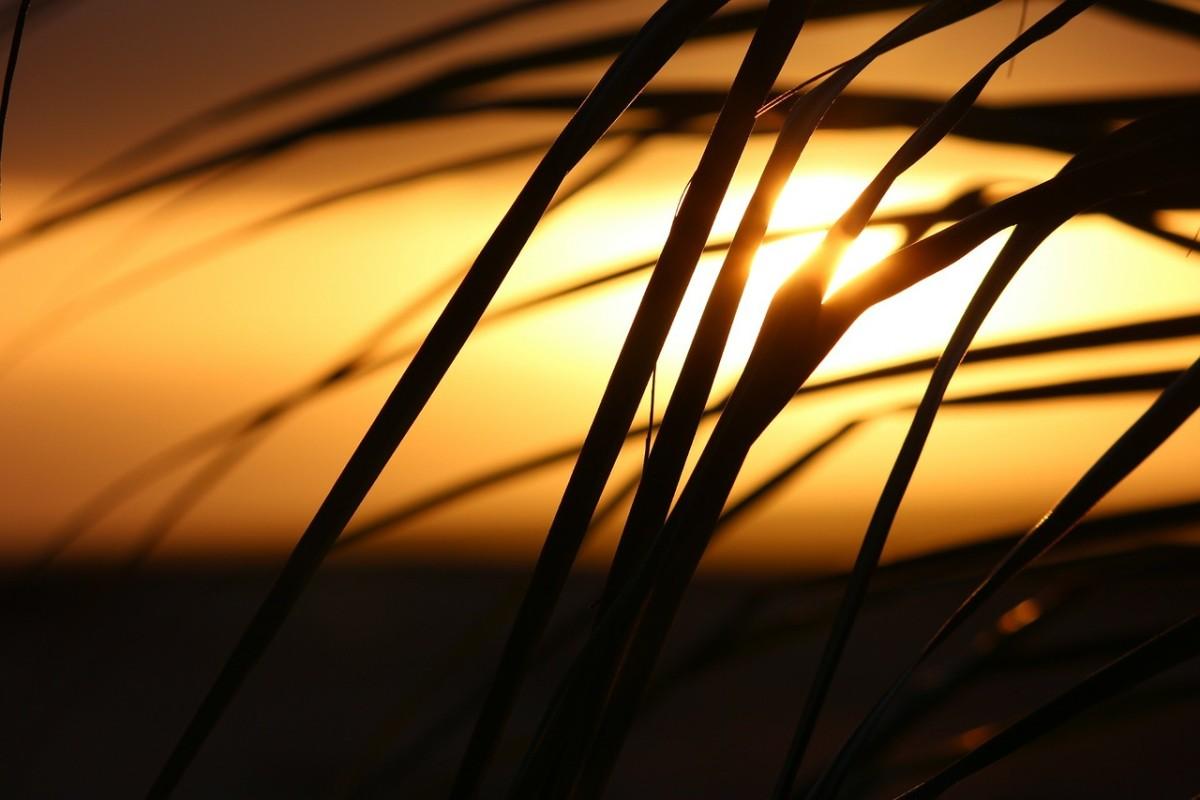 Una puesta del sol para toda la vida